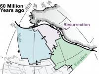 Verloren tektonische plaat teruggevonden, NewScientist 2020-11-19