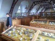 GEA-Kring Rijnland bezoekt het Mineralogisch-Geologisch Museum te Delft.