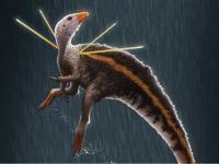 Dit is de meest flamboyante dinosaurus die onderzoekers ooit hebben ontdekt