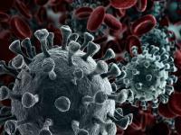 Het Coronavirus speels ons ook parten